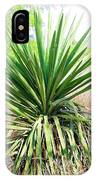 Afternoon Yucca IPhone Case