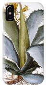 Agave, 1613 IPhone Case