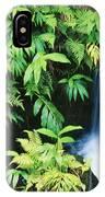 Akaka Falls State Park IPhone Case