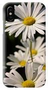 Alaskan Shasta Daisy IPhone Case