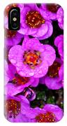 Alaskan Wild Flowers IPhone Case