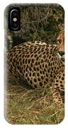 Alert Cheetah IPhone Case