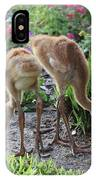 All Legs Sandhill Colts IPhone Case