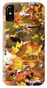 All The Leaves Are Red And Orange Fall Foliage With Sunshine IPhone Case