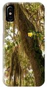 Allamanda And Oak Tree IPhone Case