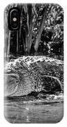 Alligator Bags Of Port Aransas IPhone Case