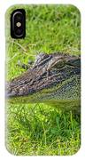 Alligator Up Close  IPhone X Case