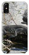 Alligators In An Everglades Swamp IPhone Case