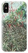 Aloe Garden Vumba IPhone Case