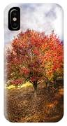 Along The Lane IPhone Case