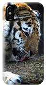 Always A Cat IPhone Case