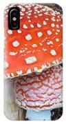 Amanita Muscaria - Red Mushroom IPhone Case