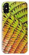 Amaumau Fern Frond IPhone Case