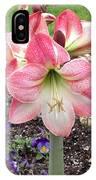 Amazing Amaryllis - Pink And White Apple Blossom Hippeastrum Hybrid IPhone Case