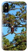 American Bald Eagle IPhone Case