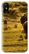 American Bison Sunset March IPhone Case