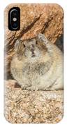 American Pika Focuses On The Camera IPhone Case
