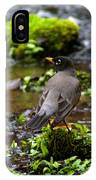 American Robin In Garden Springs Creek IPhone Case