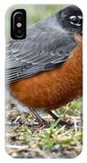 American Robin With Muddy Beak IPhone Case