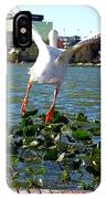 American White Pelican 007 IPhone Case