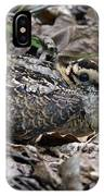 American Woodcock Chick. IPhone Case