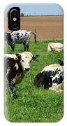 Amish Farm With Spotted Cows And Cattle In A Field IPhone Case