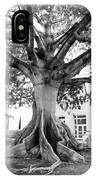 Ancient Kapok Key West IPhone Case