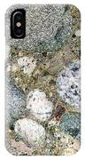 Ancient Lake Bed IPhone Case