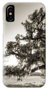 Ancient Live Oak Tree IPhone Case