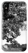 Ancient Oak, Bradgate Park IPhone Case