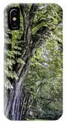 Ancient Tree Luxembourg Gardens Paris IPhone Case
