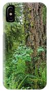 Ancient Trees IPhone Case