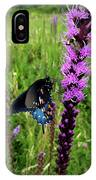 And The Bee IPhone Case by Ben Shields