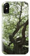 Angel Oak Branches IPhone Case
