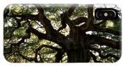 Angel Oak In November IPhone Case