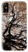 Angel Oak Johns Island Sc IPhone Case