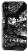 Angel Oak Limbs Bw IPhone Case