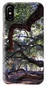 Angel Oak Side View IPhone Case