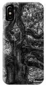 Angel Oak Tree Americana IPhone Case