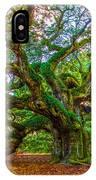 Angel Oak Tree Charleston Sc IPhone Case