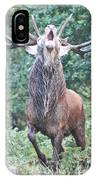 Angry Stag IPhone Case