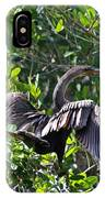 Anhinga In The Sun IPhone Case