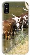 Ankole-watusi Cattle IPhone Case