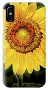 Another Artistic Sunflower IPhone Case