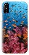 Anthias Fish And Soft Corals, Fiji IPhone Case
