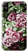 Antique Pink Roses IPhone Case