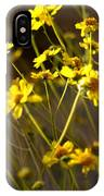 Anza Borrego Desert Sunflowers 1 IPhone Case
