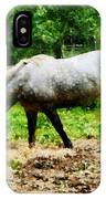 Appaloosa Eating Hay IPhone Case