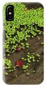 Apple And Algae In Dam Overflow IPhone Case