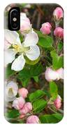 Apple Blossom Pink IPhone Case